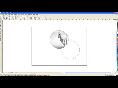 Colocar Imagem Dentro de Objetos CorelDRAW - DOI2D