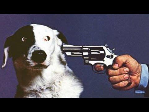 Animalisti. Boicotta contro le pellicce.