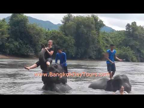 Elephant Day Trip in Thailand via Bangkok Day Tours  (Original only by BangkokDayTours Ltd.!)