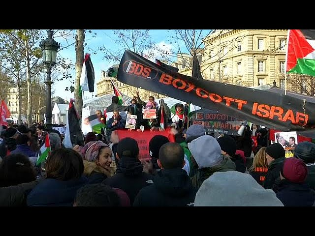 Pro-Palestinian protest in Paris