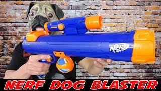 NERF DOG TENNIS BALL BLASTER / BESSER ALS DER BAZOOK-9 ???