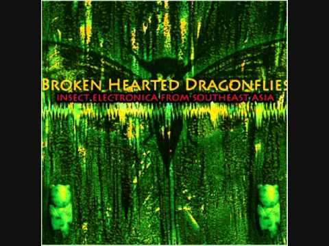 Sublime Frequencies: Brokenhearted Dragonflies: Insect Electronica From Southeast Asia