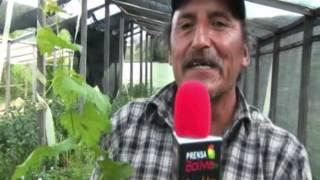 Fruticultura en San Benito 2010 con el Canal 7