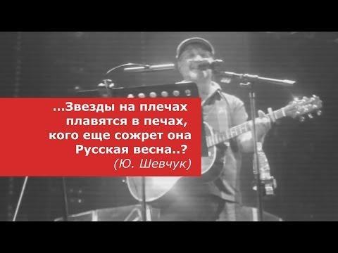 У русских патриотов горят хвосты от новой песни Шевчука