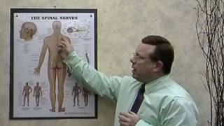 Mystery Pain?  Referred Pain?  Troy, Ohio OH Chiropractor Dr. Jack Adrian ChiroCenter Chiropractic
