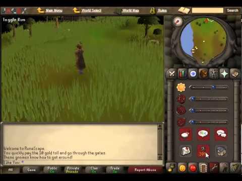 Runescape [2007] spotted kebbit hunter guide