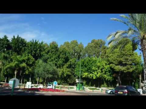 Зелёный Израиль