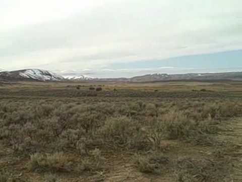 Glad's Clips from Elko, Nv.wmv