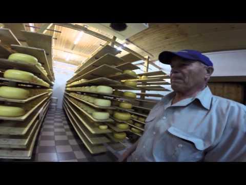 Сыр Николаевский (гауда)