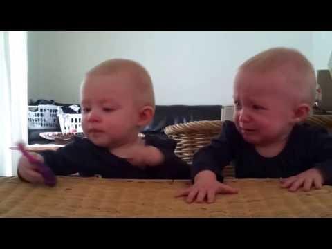 Pertengkaran Bayi Lucu