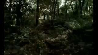 Документальный фильм: Война и цивилизация. Революция (Discovery)