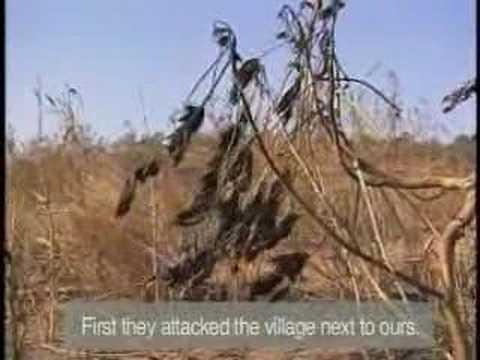 Video from Darfuri Refugee Camps (Save Darfur)