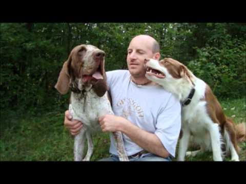 Introduzione alla conoscenza ed educazione del cane