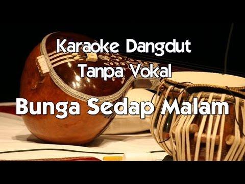Karaoke Dangdut   Bunga Sedap Malam