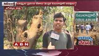ABN Ground Report on wood smuggling in obulapuram forest | Red Alert