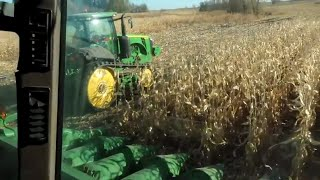 Back to Harvesting Corn