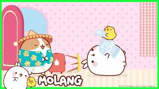 Molang - The Guest | Cartoon for kids