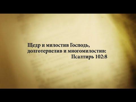 Господь щедр и милостив, царство его - вечно (8-14)