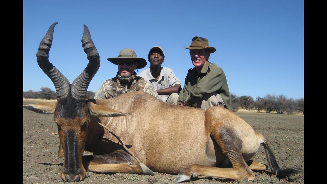 Caza Namibia Africa