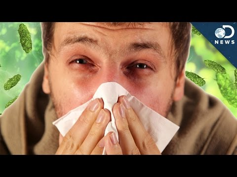 Cold vs. Flu: What's The Difference? (VIDEO)