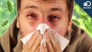 Cold vs. Flu: What