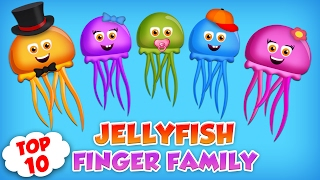 JellyFish Finger Family Collection | Top 10 Finger Family Songs