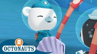 Octonauts - Helping A Spider Crab | Cartoons for Kids | Underwater Sea Education