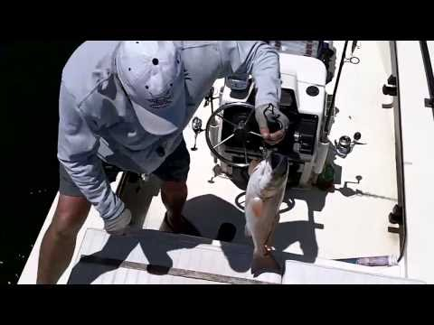 Pine Island Fishing Trip