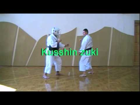 Shorinji Kempo Techniques - 1 Kyu Goho Image 1
