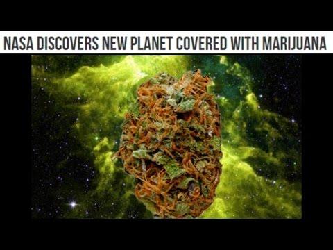 NASA discovers an illegal Planet made of Marijuana!