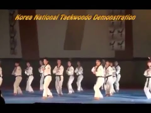 Taekwondo Demonstration 100% Korea National Team Image 1