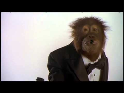 Dunston Checks In is listed (or ranked) 14 on the list The Best Ape Movies