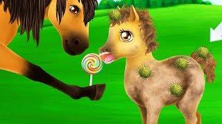 Fun Pony Care - Princess Horse Club 3 - Play Magic Animal Makeover & Royal Wedding Day Kids Games