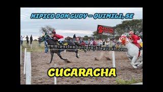 CUCARACHA, Quimili (19-05-19)