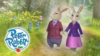 download musica Peter Rabbit - Parents Day Curious Bunnies Cartoons for Kids