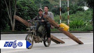 Yên Bái: Ngang nhiên đốn gỗ quý về bán | VTC