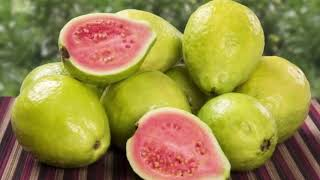 Health Benefits Of Guava