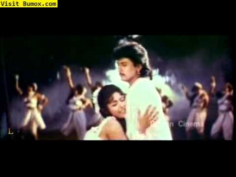 Heera South Indian Hot Video Song video