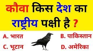GK का 10 सवाल आपको पता होना चाहिए   Interesting Gk    GK quiz in hindi (Part 2) #Gk #interestinggk