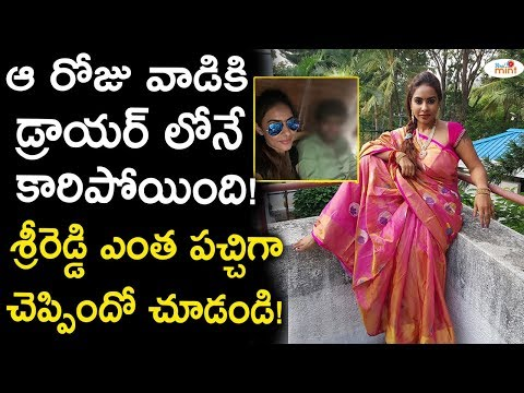 Sri Reddy Reveals Shocking Facts About an Incident in Flight   Celebrity Updates   Viral mint