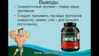 Химия тела - о протеинах-XilfyHD.com
