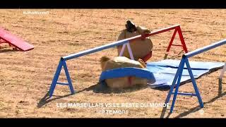 Bande annonce Marseillais vs le reste du monde 3