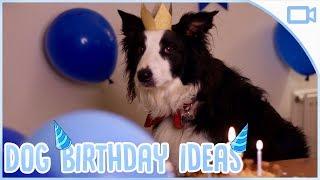 Dog Birthday Ideas!