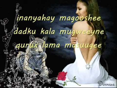somali lyrics-song-(MUUQ DHEER)  by ABDI FATAH YARE