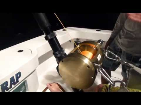Daytime Swordfishing and Giant Bluefin Tuna with Boobytrapfishingteam.com