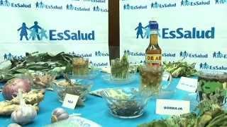 EsSalud recomienda el consumo de plantas medicinales para prevenir males respiratorios