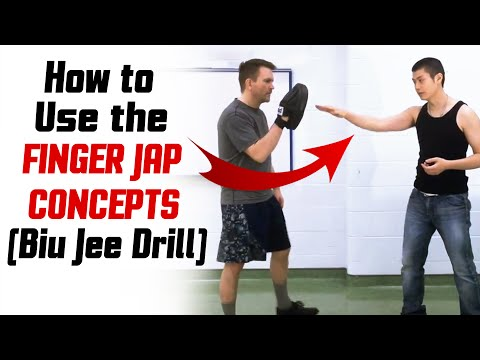 Wing Chun Techniques - Biu Jee Drill - Finger Jap Concepts Image 1