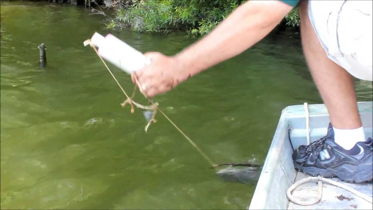 How to make catfishing noodles youtube for How to make fishing noodles