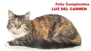 Luz del Carmen   Cats Gatos - Happy Birthday