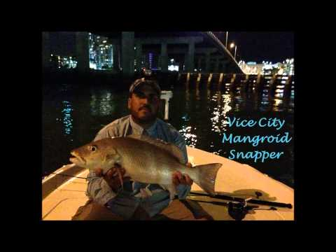 Tarpon and Snapper Fishing in Miami